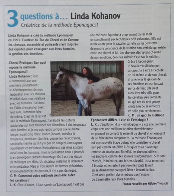 Cheval-Pratique_3questions-Linda-JKohanov