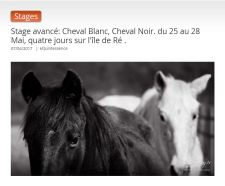 pic stage cheval blanc cheval noir