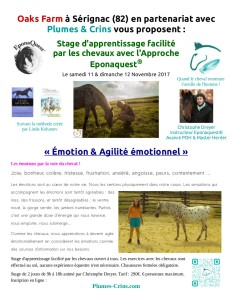 2017-08-25_PC_flyer-stage-emotion-Serignac-82_2017-11