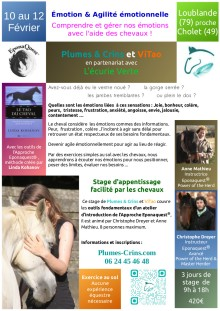 2018-01-10_PC_flyer-stage-emotion-Vendee85_2018-02_v2