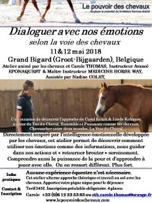 Flyer Atelier Emotion Mai 2018 Belgique