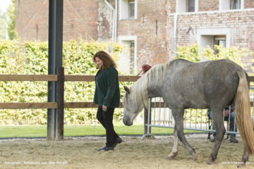 linda-in-belgium-360x240