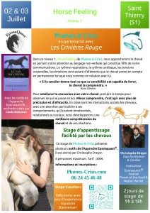 2018-06-15_PC_flyer-stage-cavalier-N1-StThierry-51_2018-07_v1
